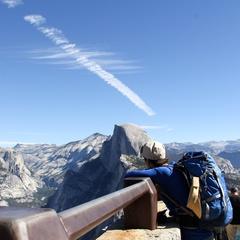 Forest, Yosemite, 4 Mile Trail