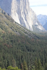 Yosemite, El Capitan, Cathedral Peak, Panorama